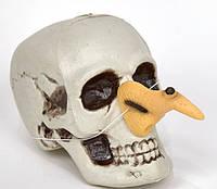 Нос ведьмы, нос бабы-яги (только по 12 штук)