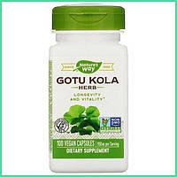 Nature's Way, Gotu Kola (центелла азиатская) для нервной системы и мозга, 950 мг, 100 капсул. США