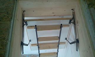 Чердачная лестница по размерам заказчика(Лестницы Украины)  4