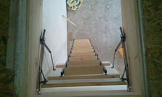 Чердачная лестница по размерам заказчика(Лестницы Украины)  5