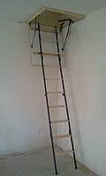 Чердачная лестница по размерам заказчика(Лестницы Украины)  8