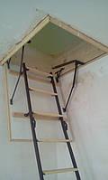 Чердачная лестница по размерам заказчика(Лестницы Украины)  9