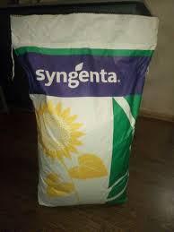 Семена подсолнечника Сингента CИ Еденис (Syngenta) (классический)