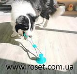 Игрушка для собак канат на присоске с мячом WM-60, фото 3
