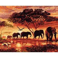 Картина рисование по номерам Babylon Саванна 50х65см VPS418 набор для росписи, краски, кисти, холст