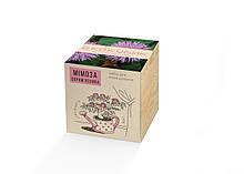 Набор для выращивания Экокубик Мимоза стыдливая HMD 114-10822165, КОД: 1578667
