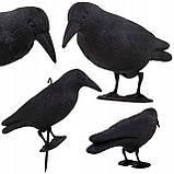 Ворон для отпугивания птиц Springos GA0129, фото 6
