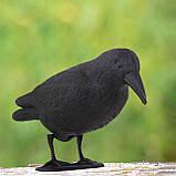 Ворон для отпугивания птиц Springos GA0129, фото 2