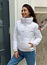 Куртка демісезонна жіноча Леора (7 кольорів), фото 5