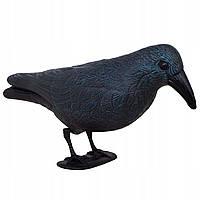 Ворон для отпугивания птиц Springos GA0132, фото 1