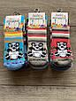 Дитячі носки шкарпетки махрові хлопчачі  Baby Stromper з тормозками, панди 0,1,3  мікс  кольорів, фото 3