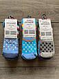 Дитячі носки шкарпетки махрові хлопчачі  Baby Stromper з тормозками, панди 0,1,3  мікс  кольорів, фото 2