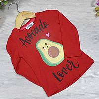 Батник трикотажный, для девочек 1-4 лет ( 4 ед в уп), Красный