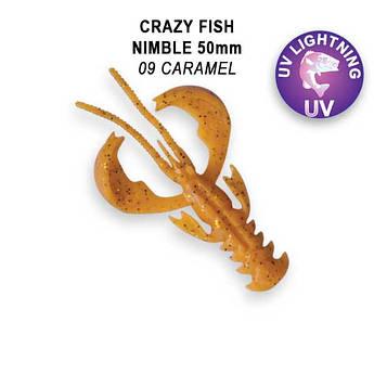"""Съедобный силикон Crazy Fish Nimble 2"""" 50-50-9-6-F кальмар"""