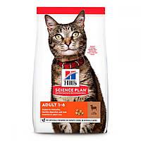 Hills Science Plan Feline Adult Lamb Сухой корм для кошек с ягненком / 10 кг
