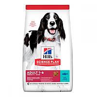 Hills Science Plan Adult Medium Tuna & Rice Сухой корм для собак средних пород с тунцом и рисом / 12 кг