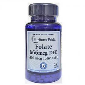 Folate 666mcg DFE (Folic Acid 400 mcg) - 250 Tablets