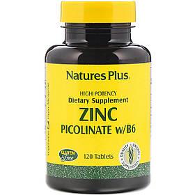 Цинк Picolinate з Вітаміном B-6, Natures Plus, 120 таблеток