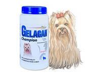 ORLING Гелакан Чемпион GELACAN CHAMPION для собак цветных окрасов - ЛУЧШАЯ ДОБАВКА  !!ВНИМАНИЕ!! ЧЕХИЯ!! 500г