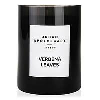 Ароматическая свеча Urban apothecary Verbena leaves 300 г КОД: UALWVLC300