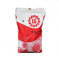 Семена подсолнечника ЛГ 5663 КЛ