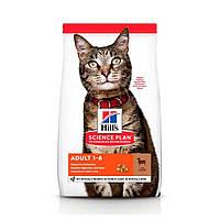 Сухий корм Hills Science Plan Feline Adult ягня для котів 3кг