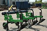 Культиватор междурядный Bomet (с долотом 5-и рядный, Польша), фото 3