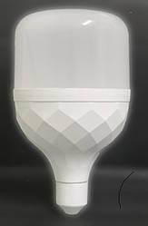 Лампа светодиодная T100 50W 6500K Е27 BIOM