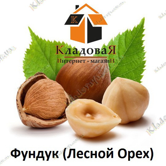 """Фундук (Лесной Орех) nic - 0 - Интернет-магазин """"Кладовая"""" в Харькове"""