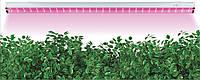 Линейный светодиодный светильник (фитосветильник)для растений Feron AL7000 12W