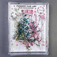 Сухоцветы для дизайна ногтей №2
