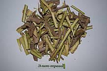 Кора бузины 100 грамм