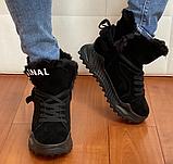Ботинки женские зимние замша черные Tomfrie 27137, фото 2