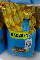 Семена кукурузы Монсанто DKC 2971