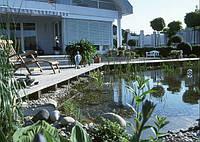 Создать и  оформить садовый пруд