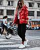 Стильна жіноча куртка тканина Тканина ПЛАЩІВКА МОНКЛЕР НАПОВНЮВАЧ СИЛІКОН 250 (с-л)