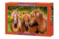 """Пазлы """"Прекрасные лошади"""", 1000 эл, Castorland, пазл,пазлы castorland,детские пазлы"""