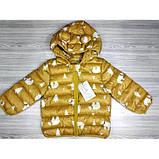 Демисезонная курточка желтая Рост: 100-120 см, фото 3
