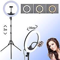 Кольцевая светодиодная лампа диаметр 35см ZB-R14 для съемки с держателем телефона кольцевой свет со штативом, фото 1