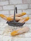 Качани кукурудзи з пластику 21см 30\23 грн (ціна за 1 шт. + 7 грн.), фото 5