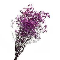 Гипсофила стабилизированная (фиолетовая) 78 см