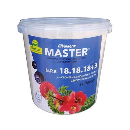 Мастер (Master) NPK 18-18-18, 1 кг — минеральное удобрение Valagro, фото 2