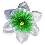 Прес-квітка Нарцис павич 14 см (560 шт в уп ), фото 2