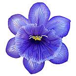 Прес-квітка Нарцис павич 14 см (560 шт в уп ), фото 3