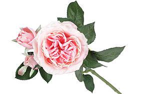 Декоративна гілка кольорів Англійської троянди, 50см, колір - рожевий BonaDi 709-459