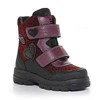 Детские демисезонные ботинки для девочки, бордо (01-116-42-20B-02), Мinimen (Минимен) 23 р. Бордовый