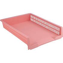 Лоток горизонтальный Axent Pastelini 4040-10-A, 330x263x67 мм, розовый