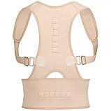 Магнитный корректор осанки Royal posture Медицинский корсет осанка Корсет для позвоночника Выпрямитель осанки, фото 6