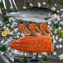 Охлажденное филе лосося упаковка 1.8 - 2.3 кг