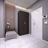 Шкаф распашной 2 двери, платяной с полками, шкаф в прихожую, в спальню S-10, фото 2